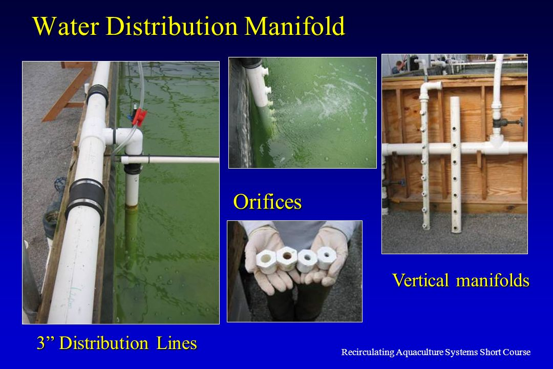 Water Distribution Manifold