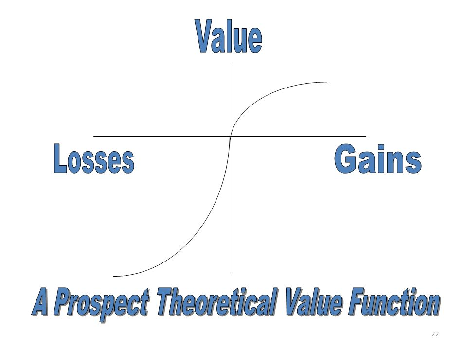 A Prospect Theoretical Value Function