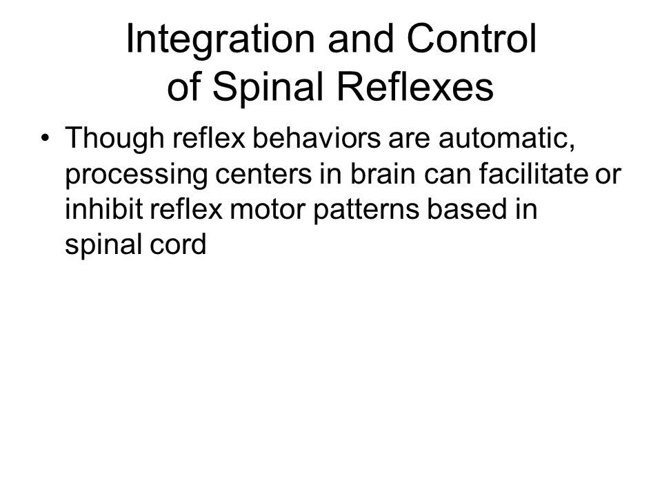 brain and reflex behaviors The brain is the control center for all human activity, including vital processes (breathing and moving) as well as thinking, judgment, and emotional reactions understanding how different parts of the brain work helps us understand how injury affects a person's abilities and behaviors.