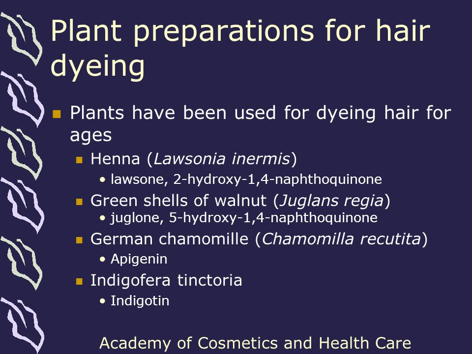Plant preparations for hair dyeing