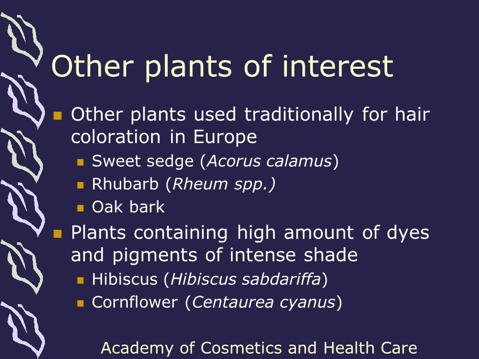 Other plants of interest