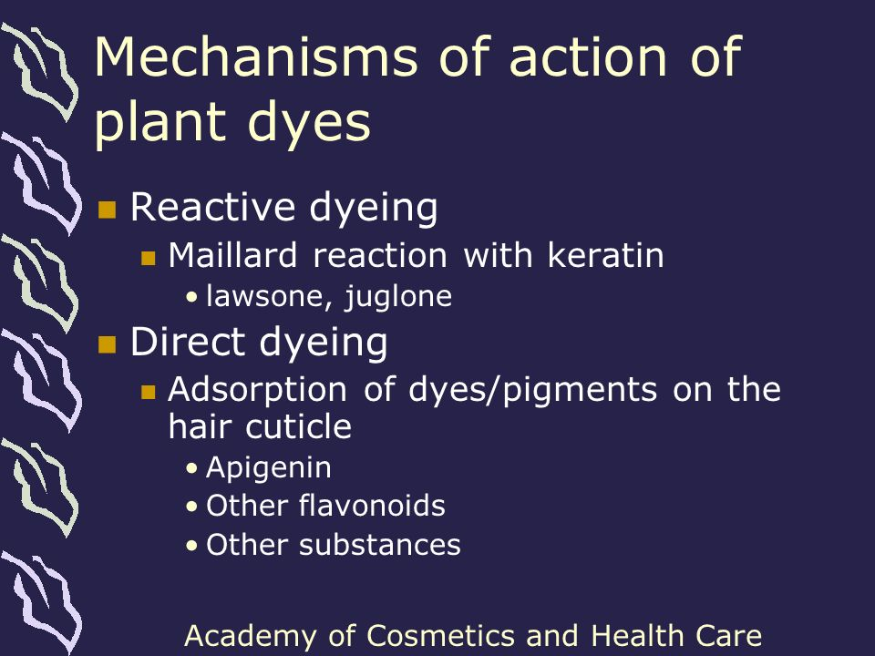 Mechanisms of action of plant dyes