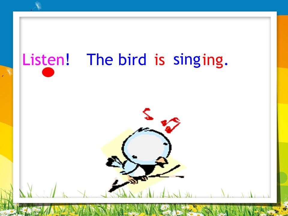 Listen! The bird is sing ing.