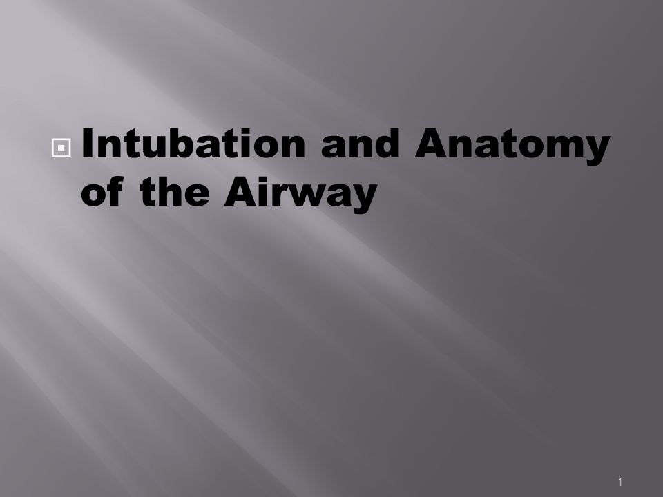 Anatomy of airway for intubation