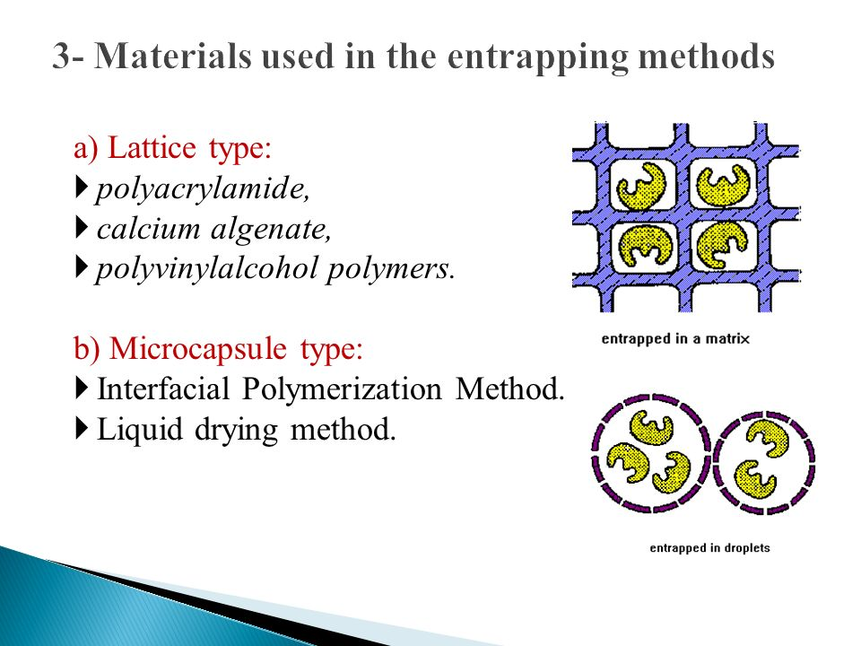 3- Materials used in the entrapping methods