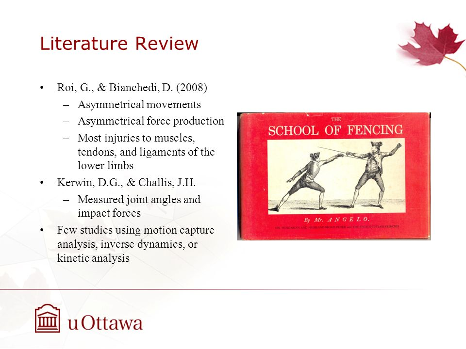 Literature Review Roi, G., & Bianchedi, D. (2008)