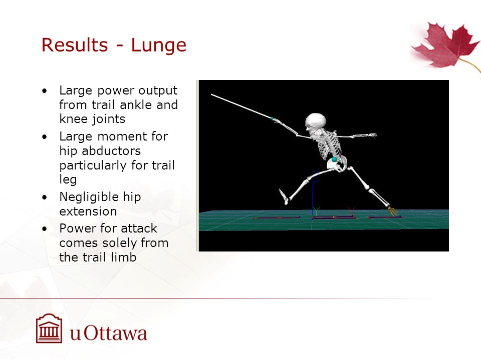 Results - Lunge Large power output from trail ankle and knee joints