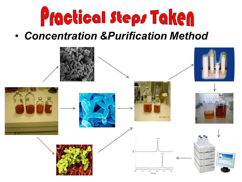 Practical Steps Taken Concentration &Purification Method