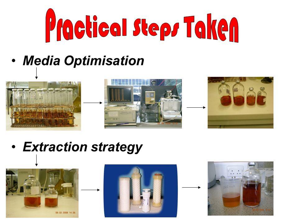 Practical Steps Taken Media Optimisation Extraction strategy