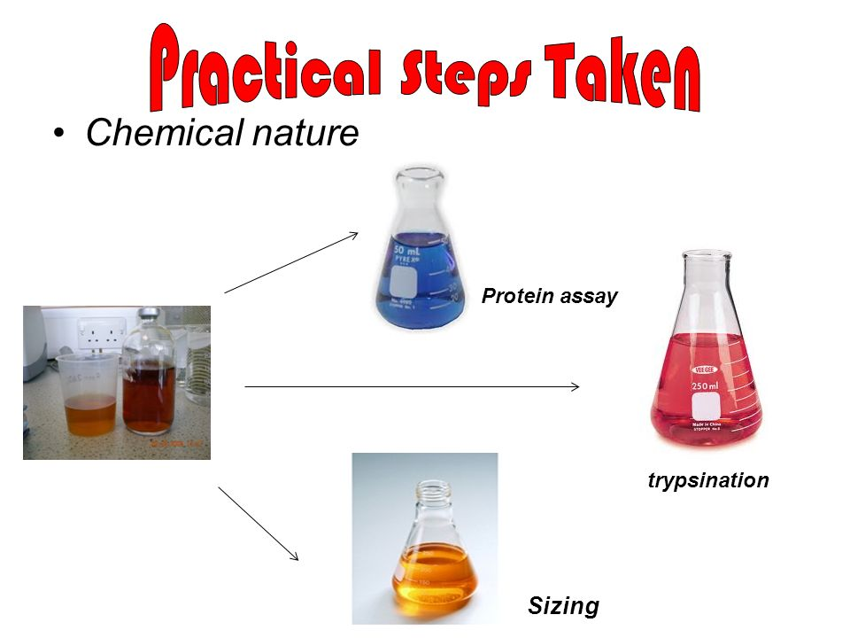 Practical Steps Taken Chemical nature Sizing Protein assay