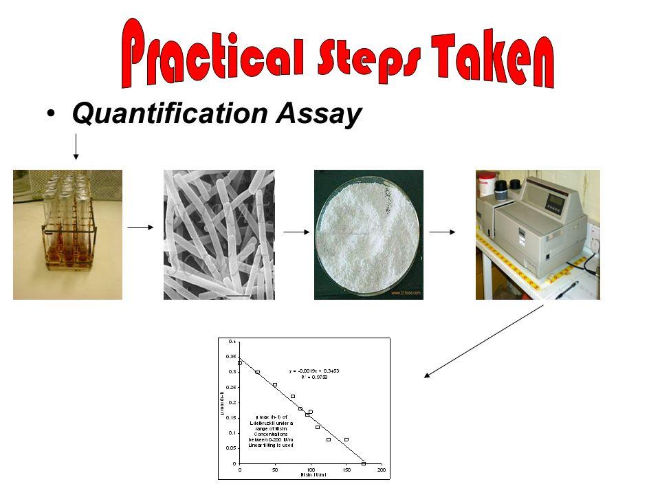Practical Steps Taken Quantification Assay