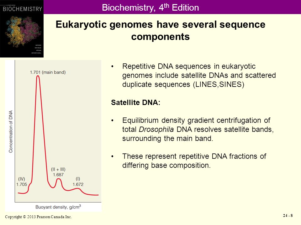 how to download canada dna sequence generator