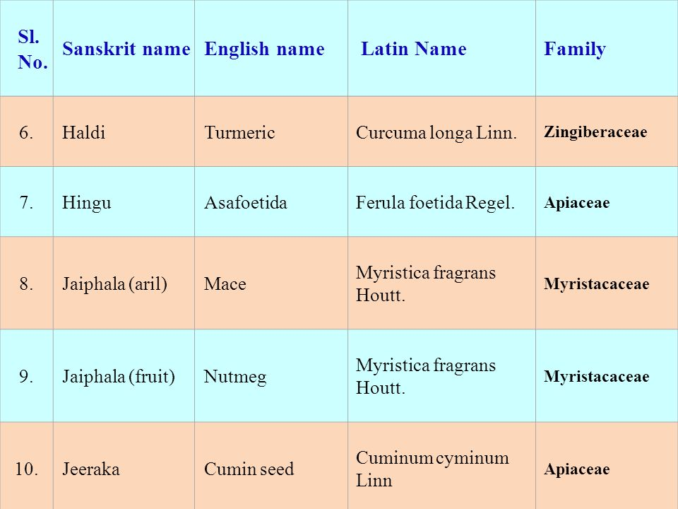 Sl. No. Sanskrit name English name Latin Name Family 6. Haldi Turmeric