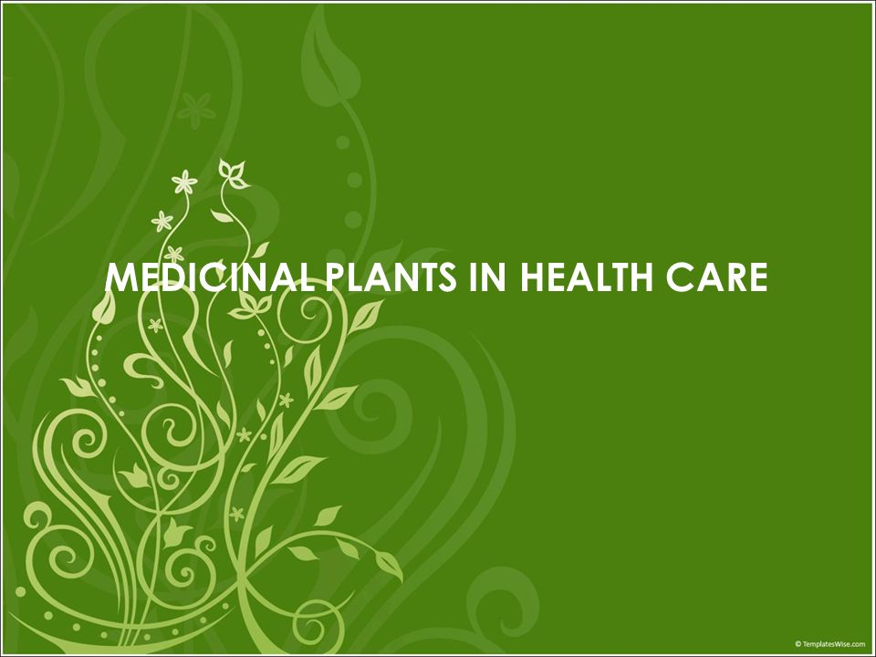 MEDICINAL PLANTS IN HEALTH CARE