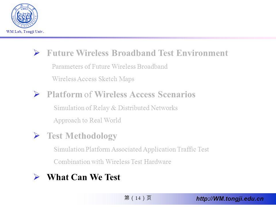 Future Wireless Broadband Test Environment