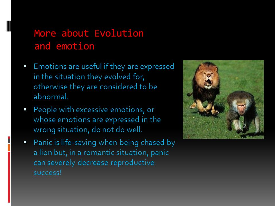 More about Evolution and emotion