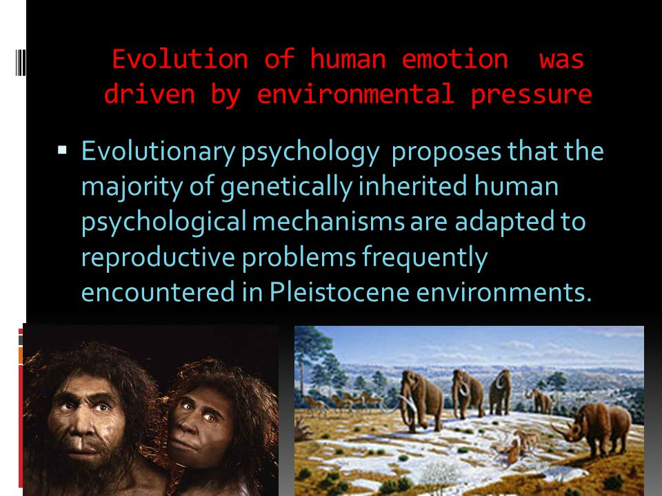 Evolution of human emotion was driven by environmental pressure