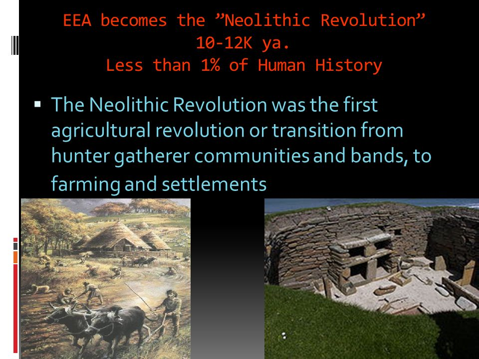 EEA becomes the Neolithic Revolution 10-12K ya