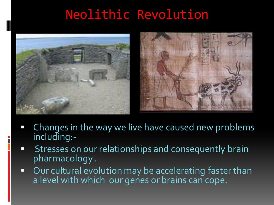 Neolithic Revolution Changes in the way we live have caused new problems including:-