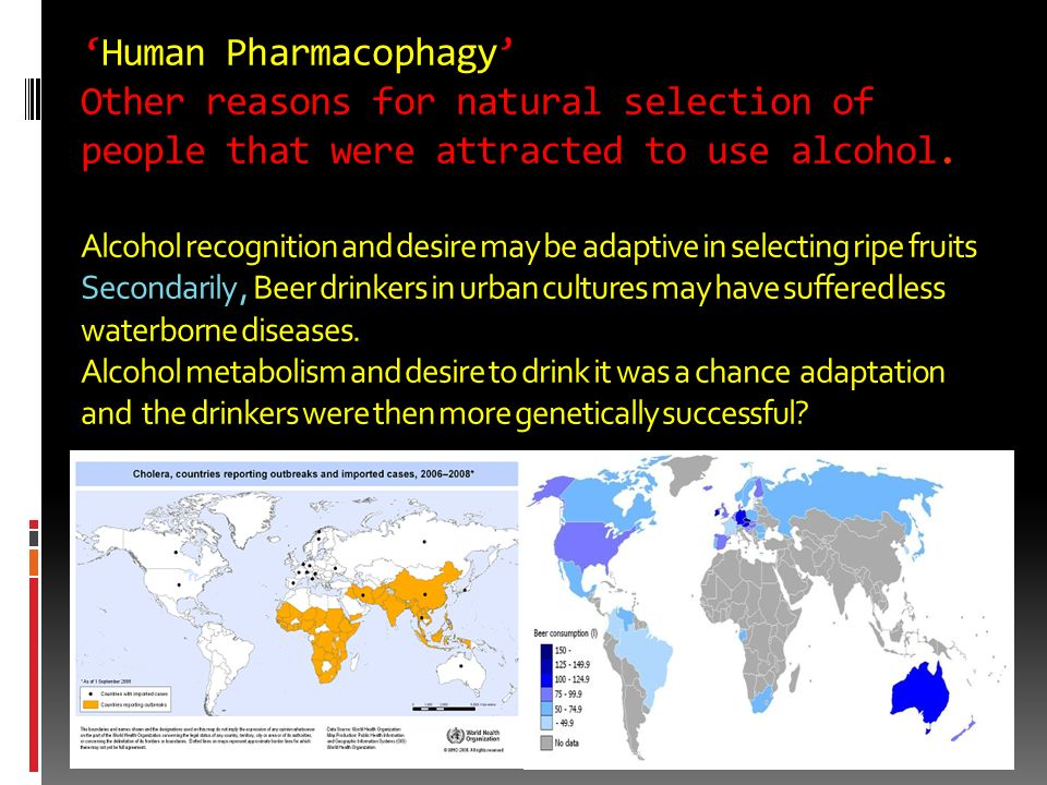 'Human Pharmacophagy' Other reasons for natural selection of people that were attracted to use alcohol.