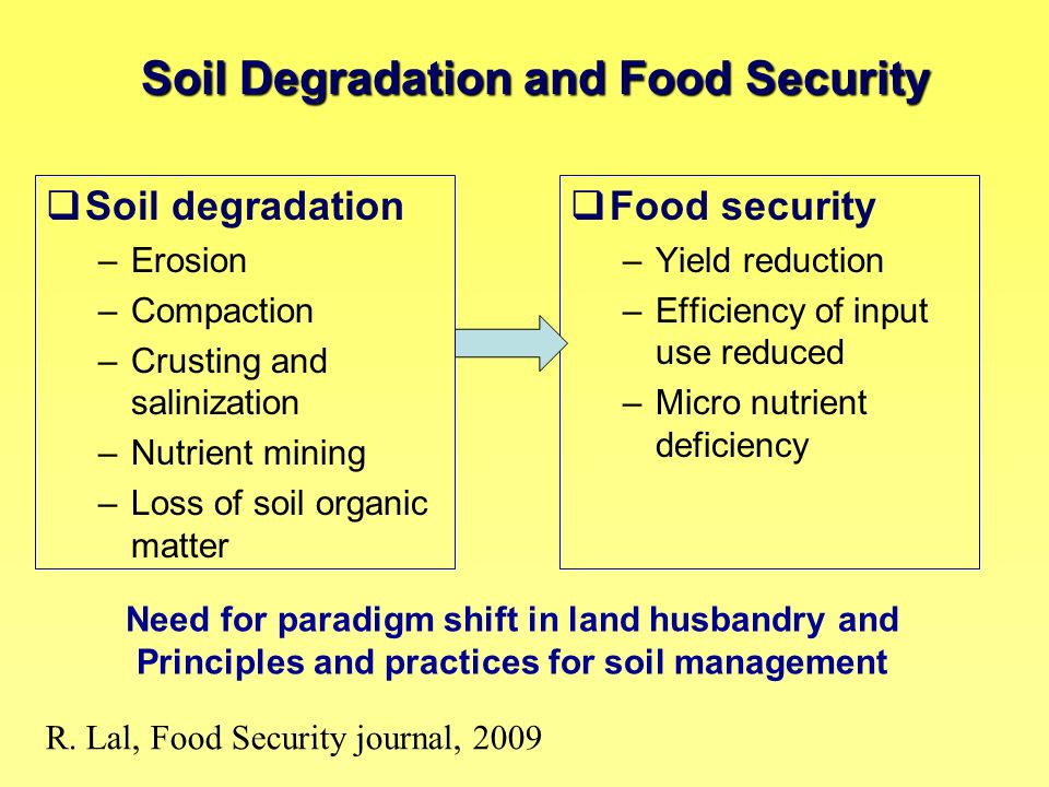 Soil degradation Food security Erosion Compaction