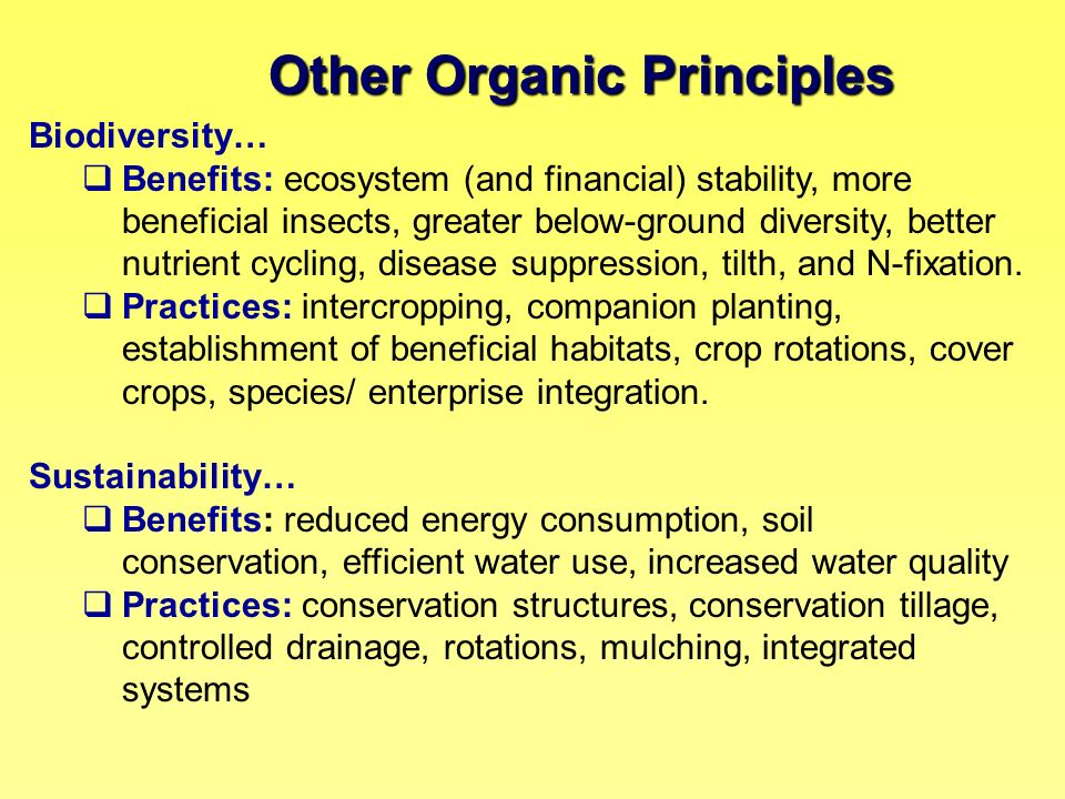 Other Organic Principles