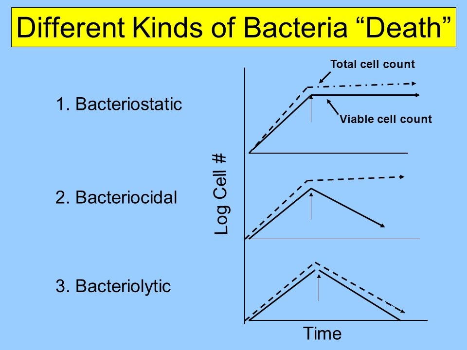 Different Kinds of Bacteria Death