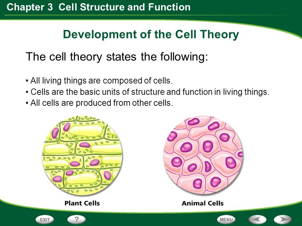 section 1 discovering cells ppt video online download. Black Bedroom Furniture Sets. Home Design Ideas