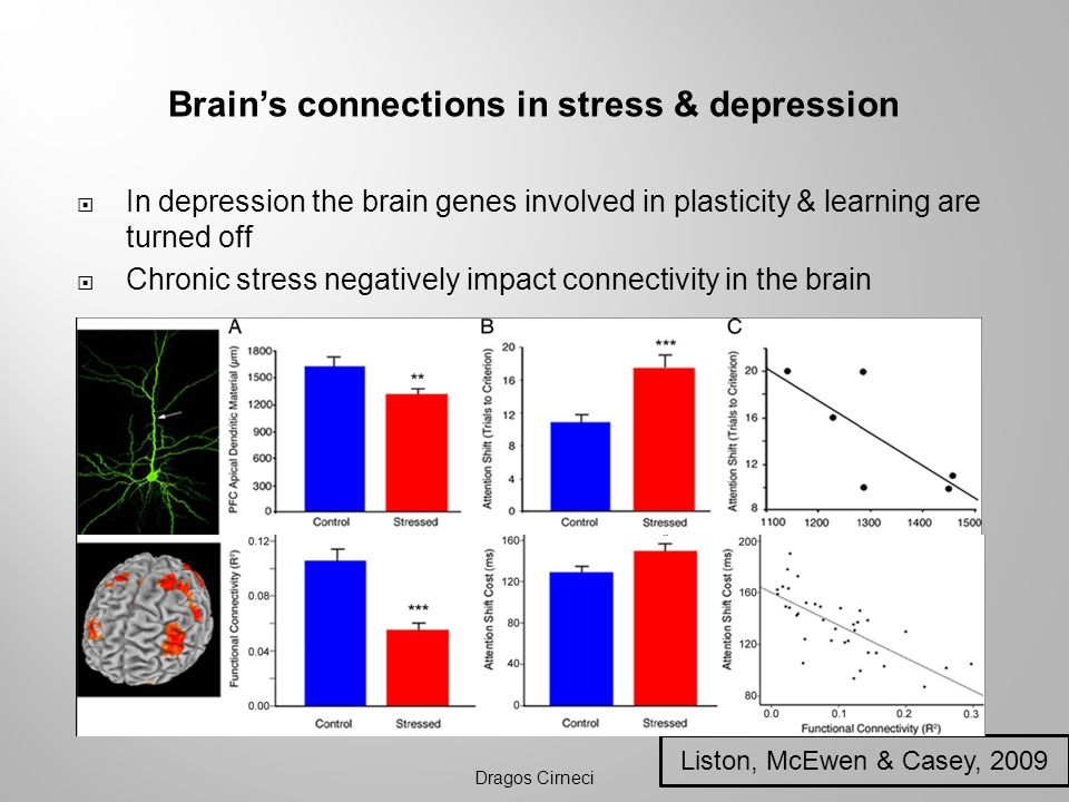 Brain's connections in stress & depression