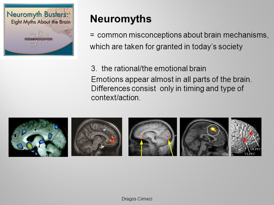 Neuromyths = common misconceptions about brain mechanisms,