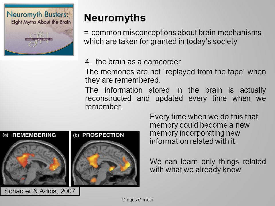 Neuromyths = common misconceptions about brain mechanisms, which are taken for granted in today's society.