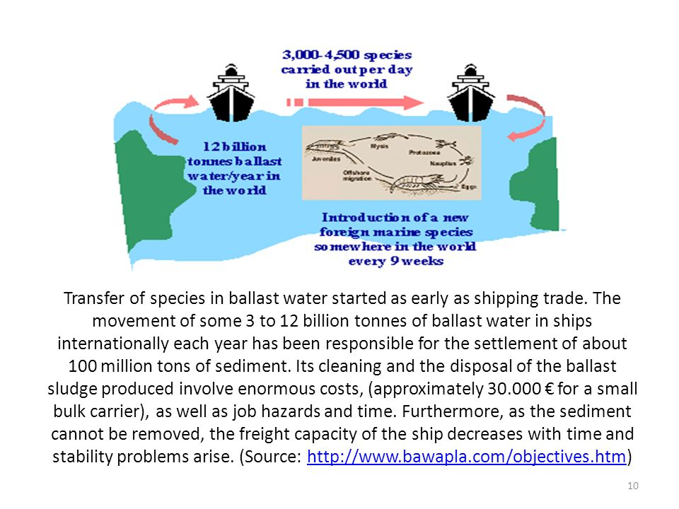Transfer of species in ballast water started as early as shipping trade.
