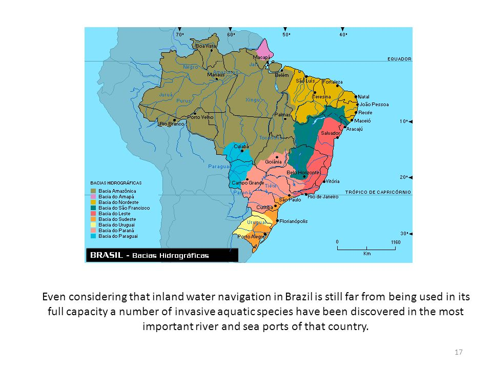 Even considering that inland water navigation in Brazil is still far from being used in its full capacity a number of invasive aquatic species have been discovered in the most important river and sea ports of that country.