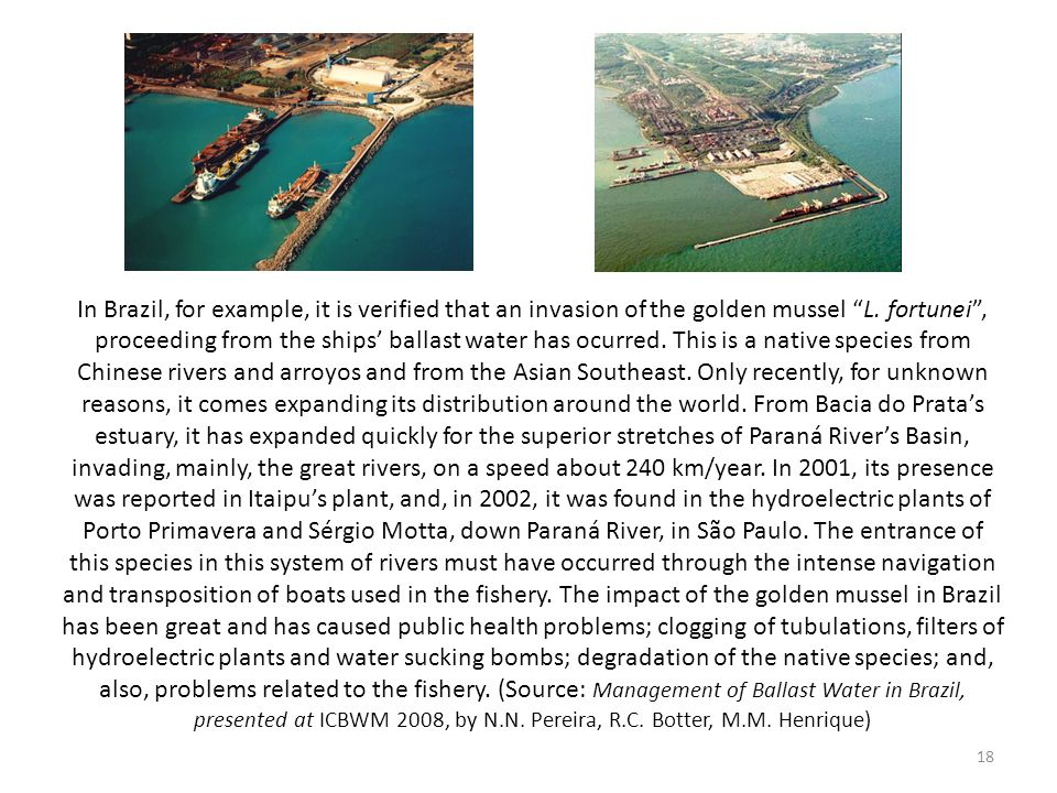 In Brazil, for example, it is verified that an invasion of the golden mussel L.