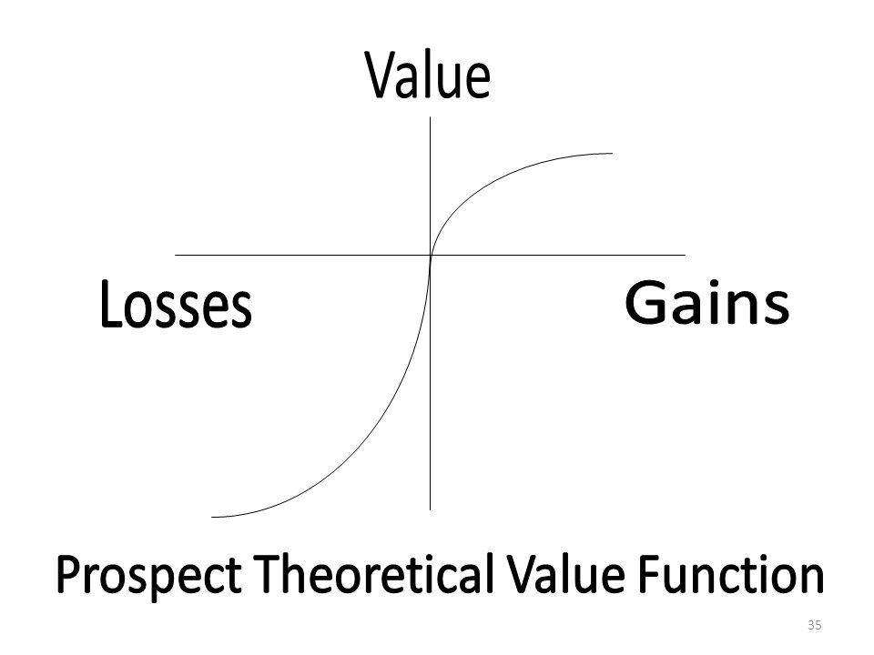 Prospect Theoretical Value Function