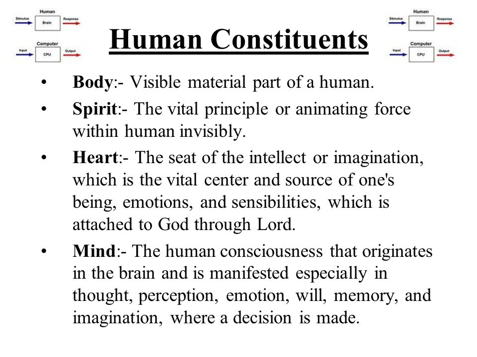 Human Constituents Body:- Visible material part of a human.