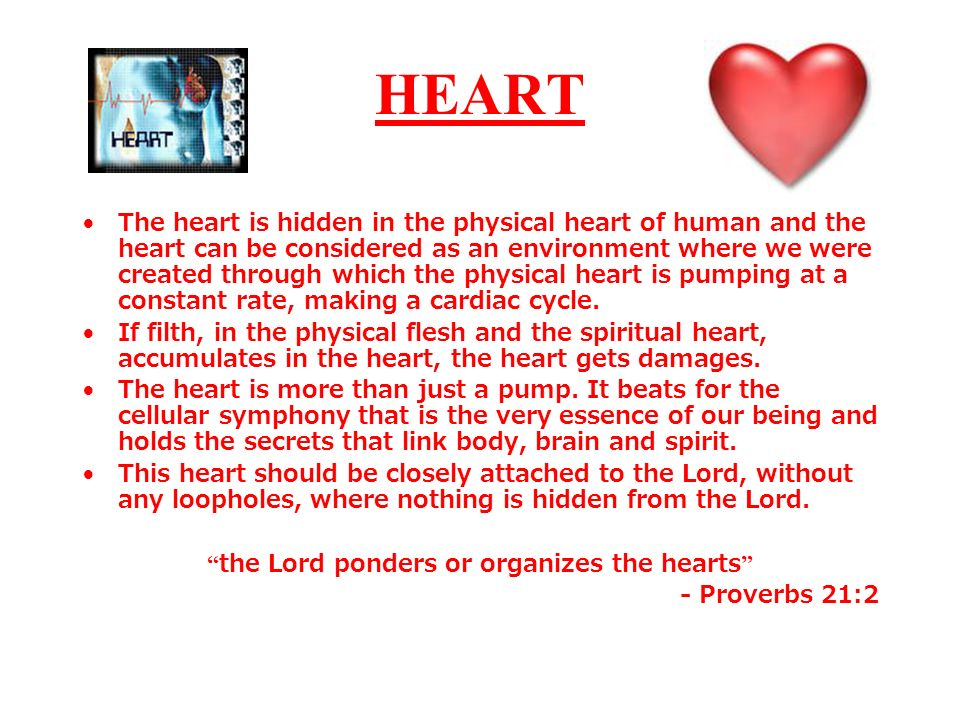 the Lord ponders or organizes the hearts