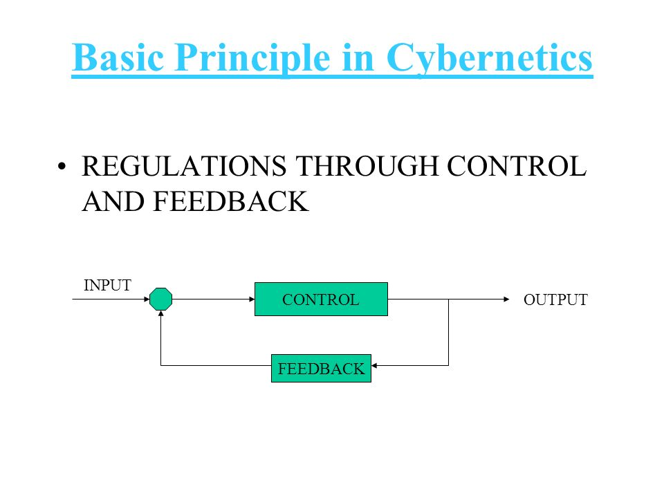 Basic Principle in Cybernetics