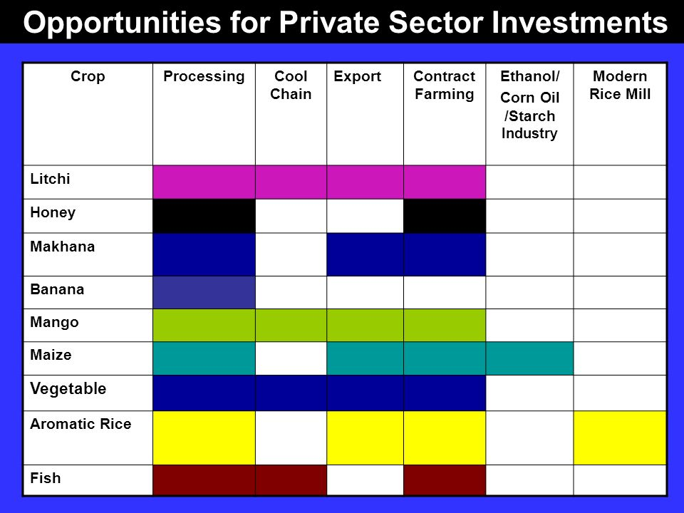 Opportunities for Private Sector Investments Corn Oil /Starch Industry