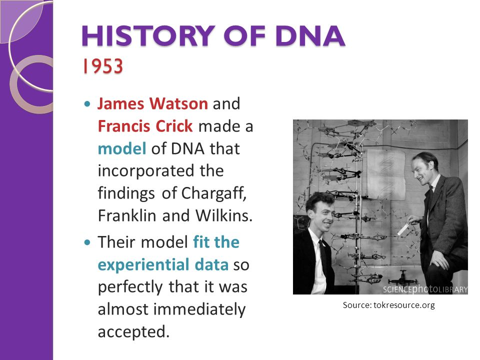 dna history and structure The story of how dna's structure was discovered is a typical scientific story of  generations of research building on one another (istock.