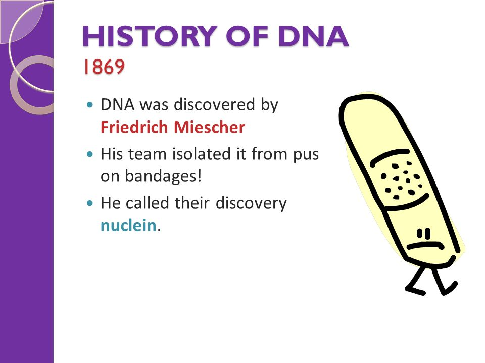 history of dna From the begin, dna forensics laboratory proved that dna testing is unique method and tool for biological identification check history of dna testing.