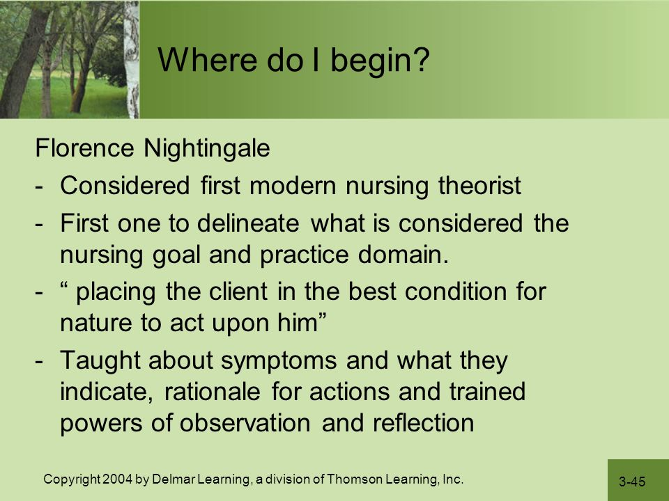 nursing theory paper florence nightingale Florence nightingale's environmental theory is a holistic approach to health care the basis of this theory is the inter-relationship of a healthful environment with nursing.