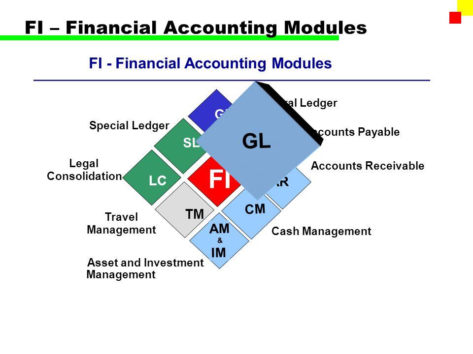 sap financial accounting module pdf