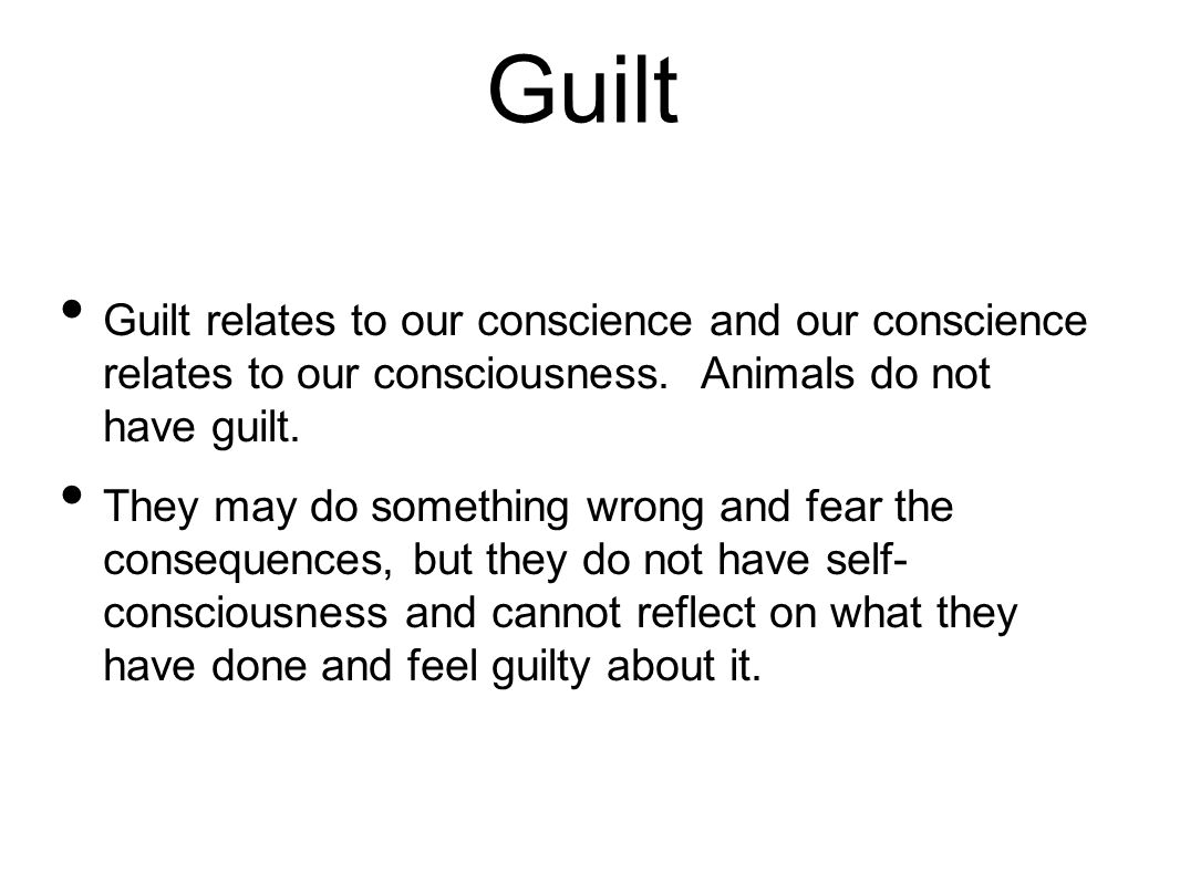 Guilt Guilt relates to our conscience and our conscience relates to our consciousness. Animals do not have guilt.