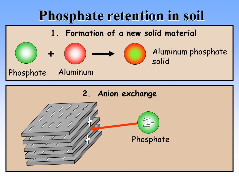 how to detect phosphate anion