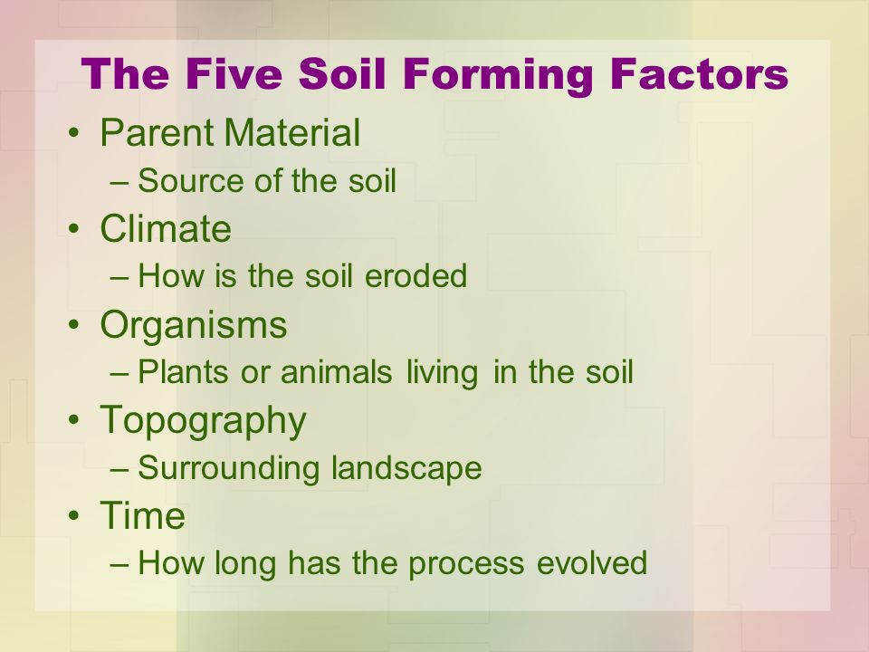 Cases involving soil evidence ppt video online download for Soil forming factors
