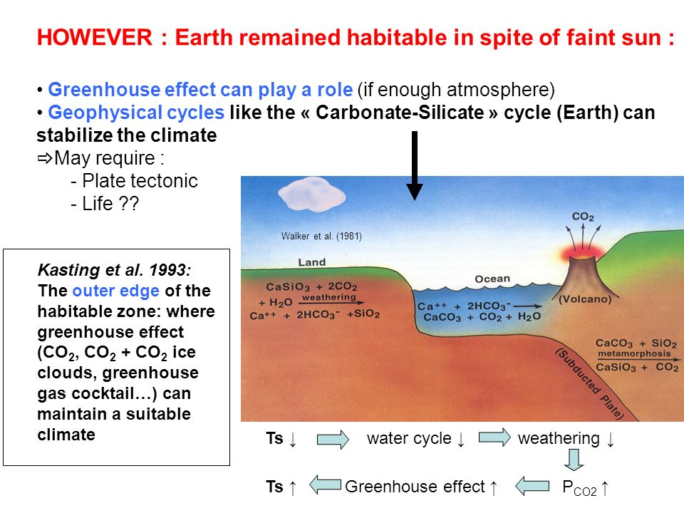 HOWEVER : Earth remained habitable in spite of faint sun :