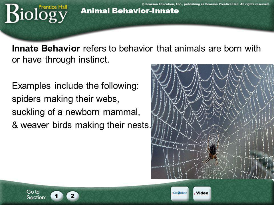 Animal Behavior-Innate