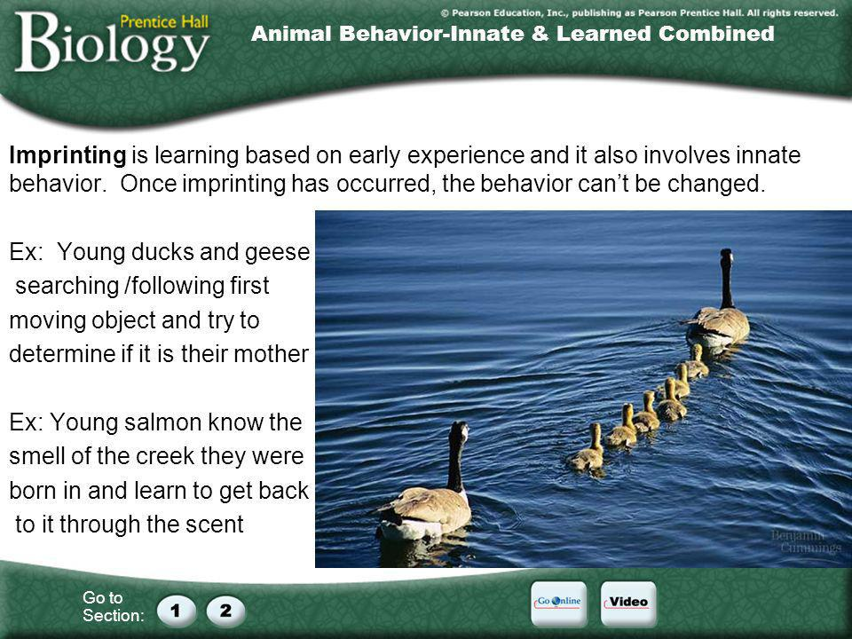 Animal Behavior-Innate & Learned Combined
