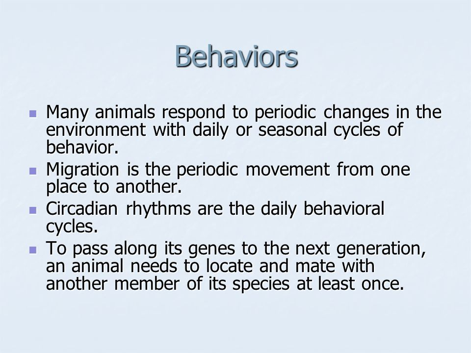 Behaviors Many animals respond to periodic changes in the environment with daily or seasonal cycles of behavior.